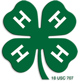 4H Golden Valley 4H Musselshell County Montana